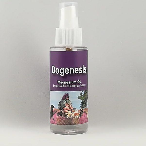 Magnesium Öl-Spray Robert Franz